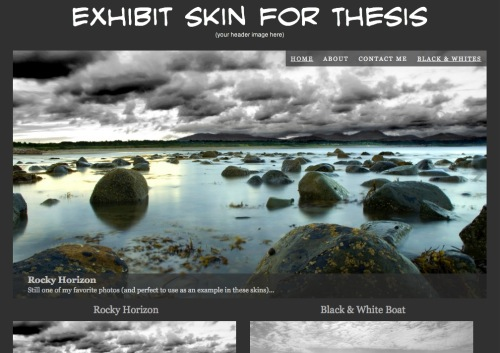 Thesis Skin for Photographers: Exhibit